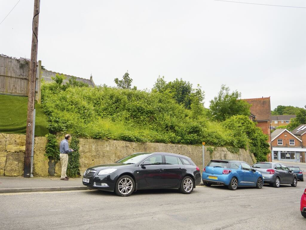 Planning consultant looking at overgrown plot in East Sussex
